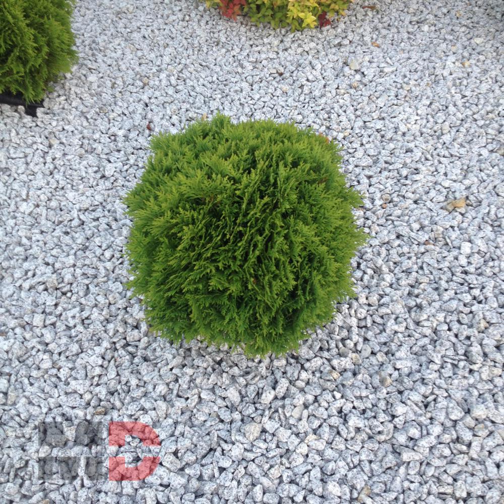 Kamień ogrodowy - MD Granit - 16